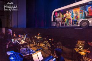 Priscilla-Orchestra-37